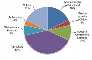 Representatividade social da parceria (percentual)