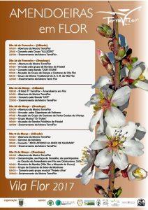 Amendoeiras em Flor 2017 – Vila Flor